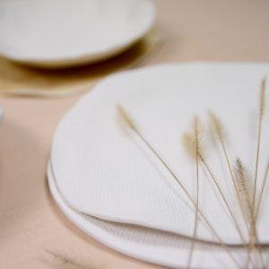 vajilla zaku porcelana